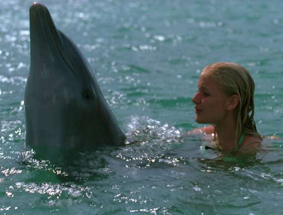 Eye-Of-The-Dolphin-carly-schroeder-23859758-576-438