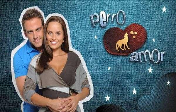 jocul-seductiei-ldquo-perro-amor-rdquo_size1